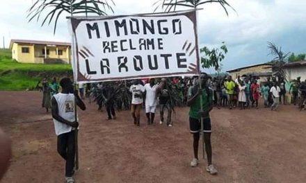 Gabon: les populations del'Ogoulouréclament la route