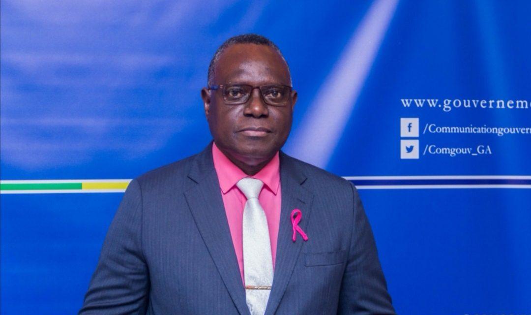 Gabon: le CIRMF est formelle,pas d'Ebola à Port Gentil
