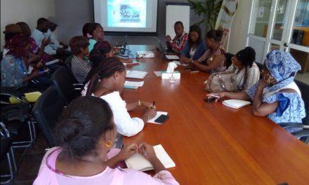 Gabon: Formation sur l'épanouissement de la femme par le numérique